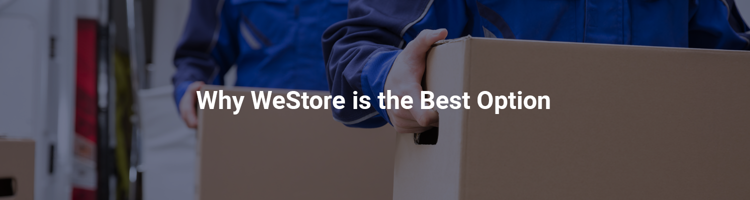 Why We Store is the Best Option