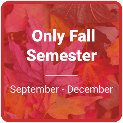 Only Fall Semester (September-December)